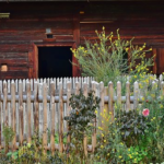 鉢植えのオリーブの育て方や手入れ方法のコツとは?