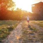 オリーブをベランダで育てる場合の西日対策はどうすればいい?