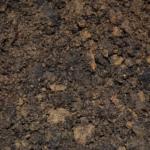 オリーブの用土の作り方や配合比率とは?