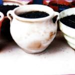 オリーブの鉢植えにおすすめな用土とは?